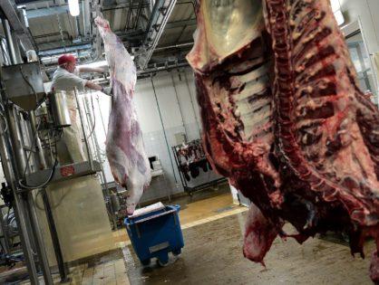 L'évaluation des carcasses évolue