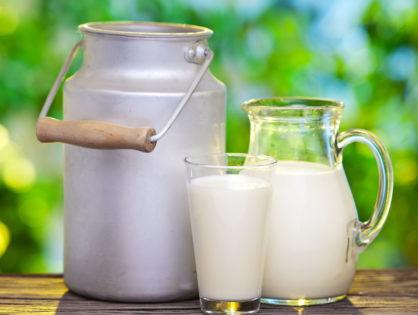 L'augmentation de la production de lait bio inquiète