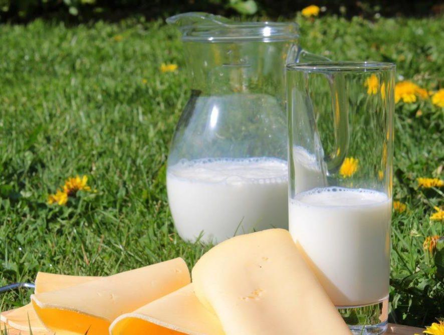 Le produits laitiers européens s'exportent bien