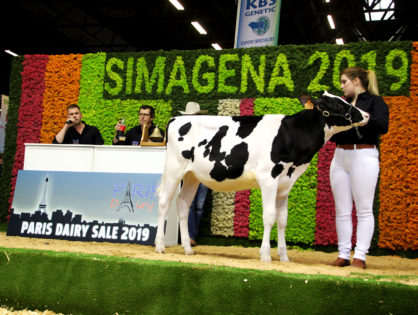 Paris Dairy Sale : 130 000 euros pour une génisse