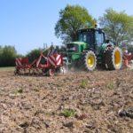 Maïs : détruire les couverts avant le 15 mars