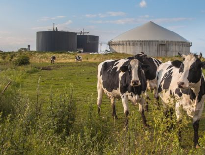 Engie confirme ses ambitions dans le biogaz