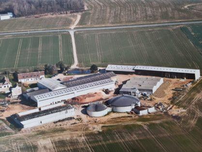 Visitez l'élevage Auguste, naisseur de la génisse la plus chère d'Europe