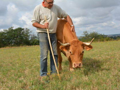 « La viande bio répond aux attentes »