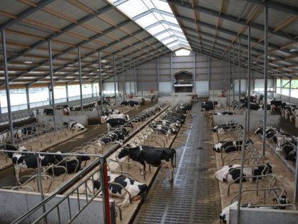 Prix du lait : un à-coup en 2020 ?