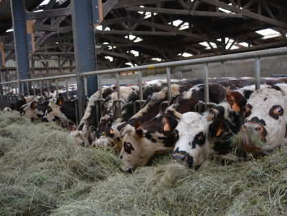 L'agro-écologie au banc d'essai