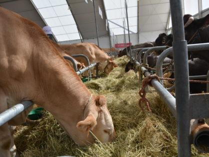 Le Sommet de l'élevage à l'agenda