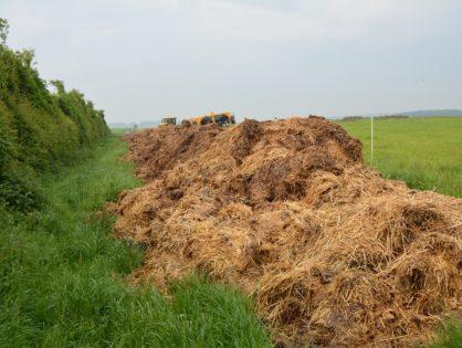 Nitrates : des progrès insuffisants